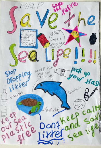 Plastic Pollution poster containing facts about Plastic Pollution and how to stop it. Safe the Sea Life!