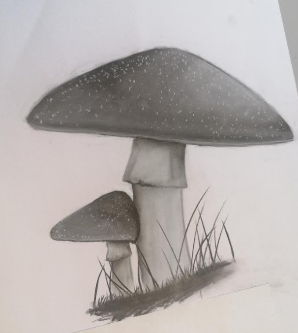 A sketch by a student at The Leigh UTC.